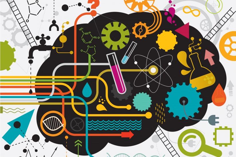 рациональный мозг