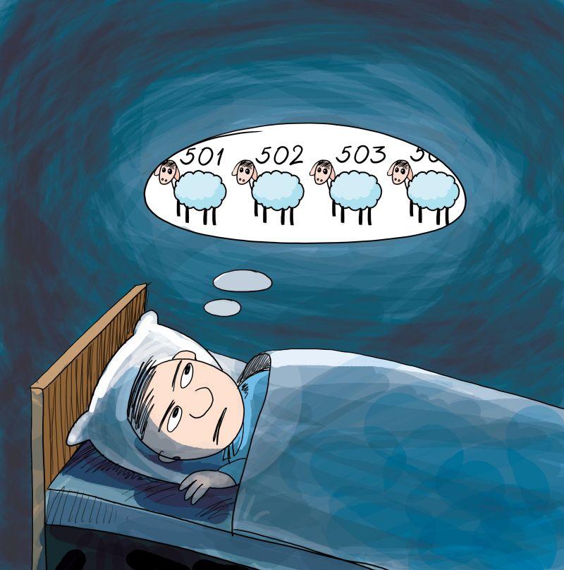 считает овец